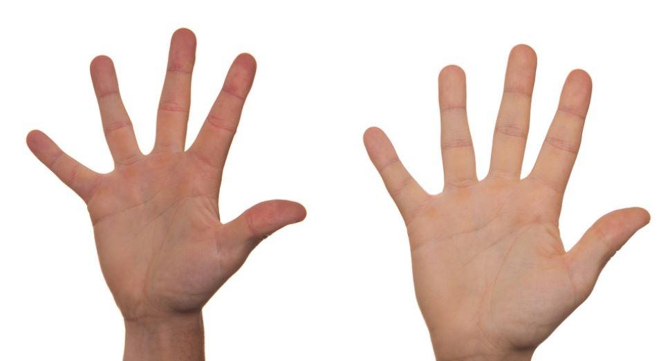 Significado del número 5: Numerología cinco