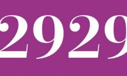 Significado del número 2929: Numerología Dos mil novecientos veintinueve