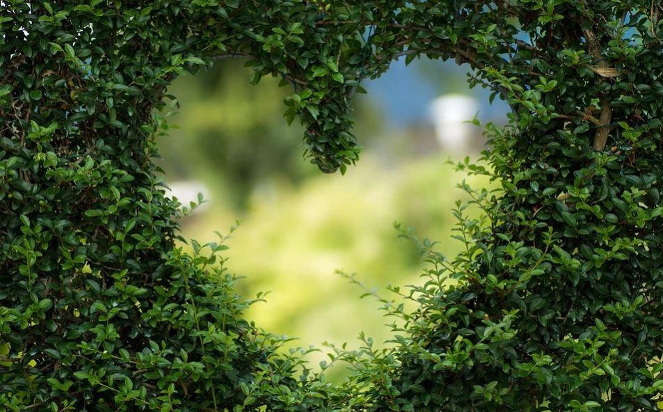 Tauro en el amor