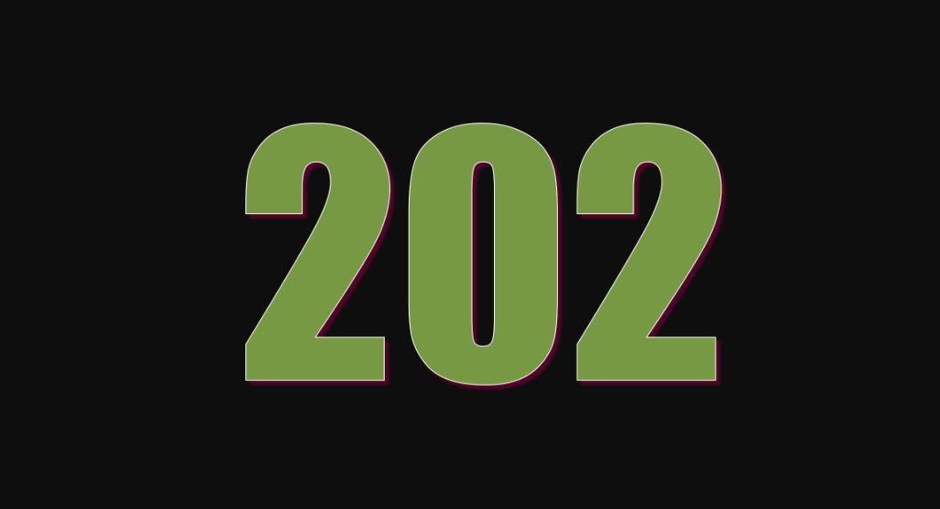 Significado del número 202