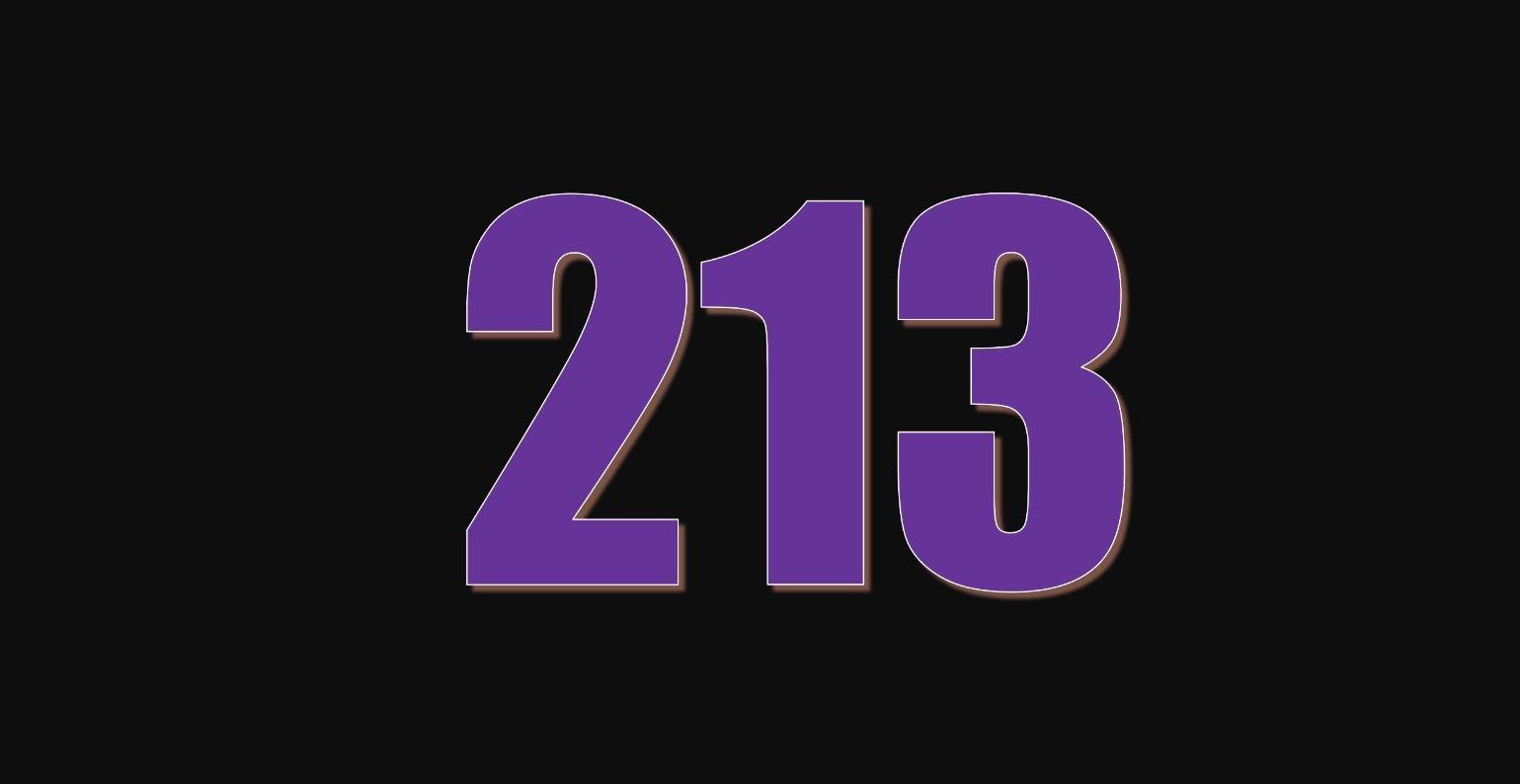 Significado del número 213