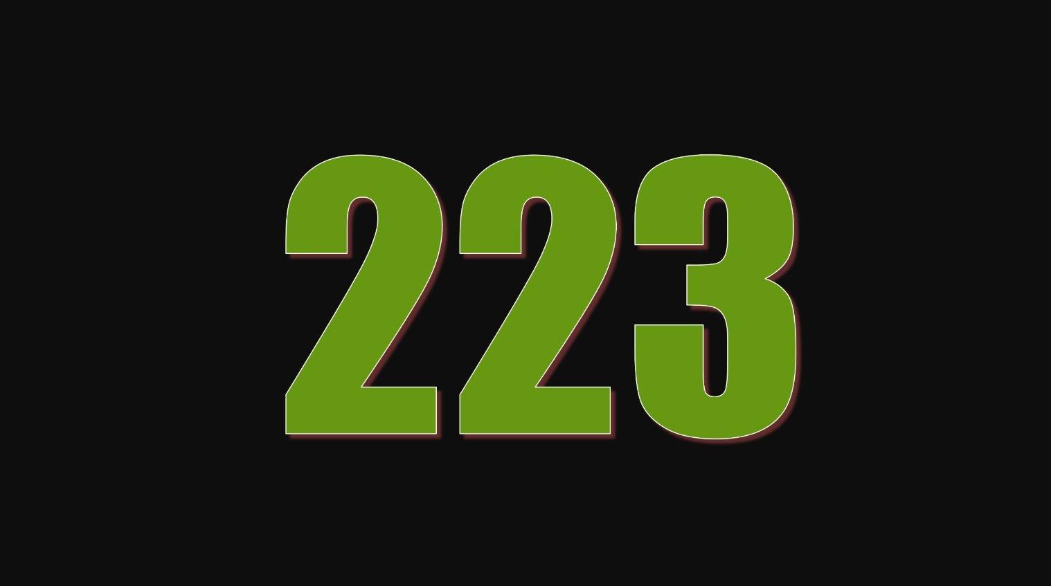 Significado del número 223