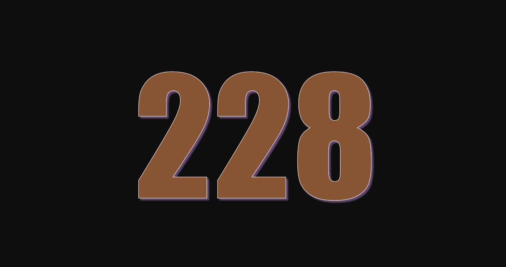 Significado del número 228