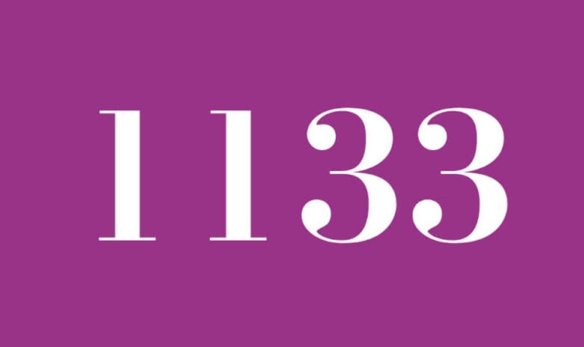 Significado del número 1133