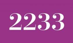 Significado del número 2233: Interpretación de la numerología