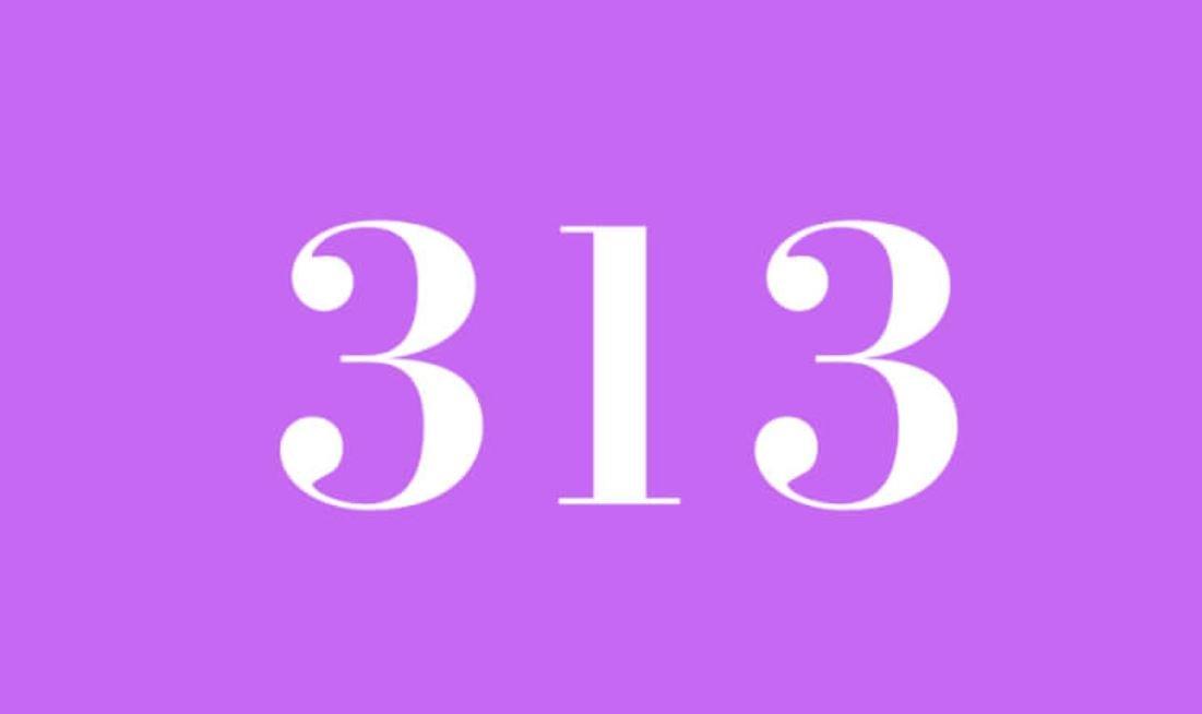 Significado del número 313