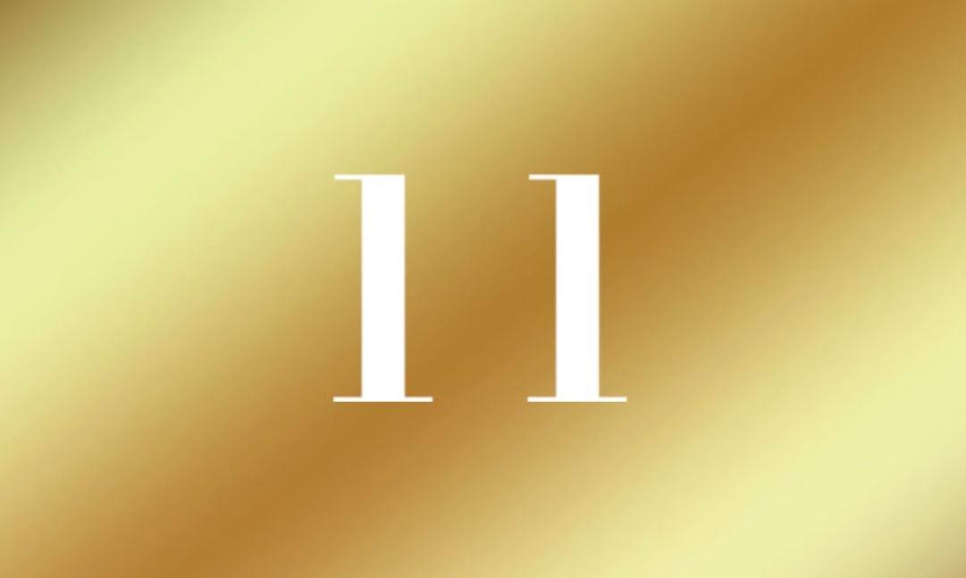 Número de vida 11