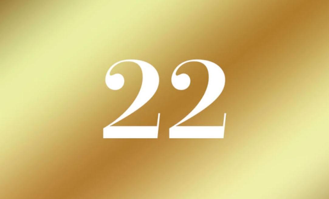 Número de vida 22