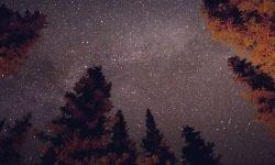8 de marzo signo: Horóscopo y personalidad
