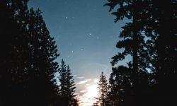 7 de abril signo: Horóscopo y signos del zodiaco