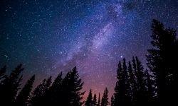 18 de abril signo: Horóscopo y signos del zodiaco