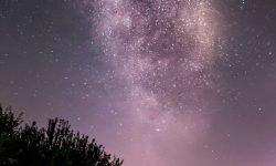 28 de abril signo: Horóscopo y signos del zodiaco
