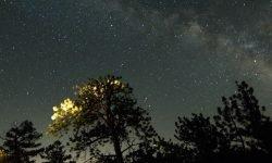 16 de mayo signo: Horóscopo y signos del zodiaco