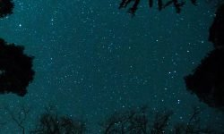 11 de junio signo: Horóscopo y signos del zodiaco