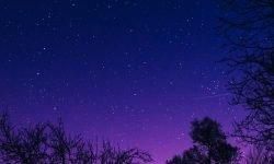 2 de julio signo: Horóscopo y signos del zodiaco