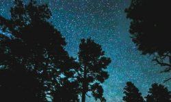 4 de julio signo: Horóscopo y signos del zodiaco
