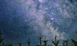 6 de julio signo: Horóscopo y signos del zodiaco