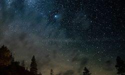 14 de julio signo: Horóscopo y signos del zodiaco