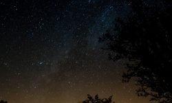 23 de julio signo: Horóscopo y signos del zodiaco