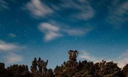 26 de julio signo: Horóscopo y signos del zodiaco