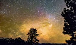 27 de julio signo: Horóscopo y signos del zodiaco