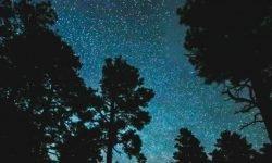 28 de julio signo: Horóscopo y signos del zodiaco