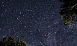 31 de julio signo: Horóscopo y signos del zodiaco