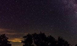 5 de agosto signo: Horóscopo y signos del zodiaco