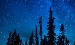 28 de agosto signo: Horóscopo y signos del zodiaco