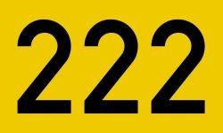 El número angelical 222: Ángeles y significado