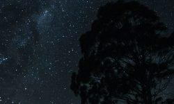 22 de septiembre signo: Horóscopo y signos del zodiaco