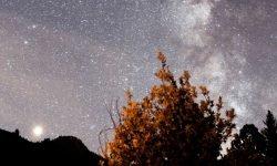 7 de septiembre signo: Horóscopo y signos del zodiaco