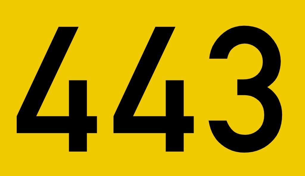 El número angelical 443