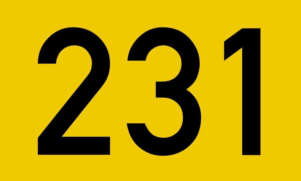 El número angelical 231