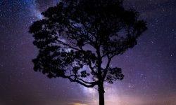 26 de octubre signo: Horóscopo y signos del zodiaco