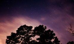 5 de noviembre signo: Horóscopo y signos del zodiaco