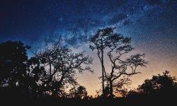 9 de noviembre signo: Horóscopo y signos del zodiaco