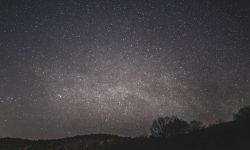 13 de noviembre signo: Horóscopo y signos del zodiaco