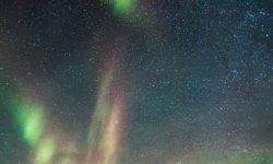 17 de noviembre signo: Horóscopo y signos del zodiaco