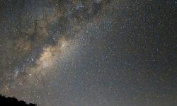 20 de noviembre signo: Horóscopo y signos del zodiaco