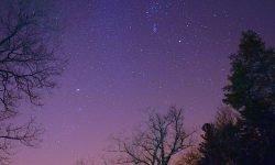 24 de noviembre signo: Horóscopo y signos del zodiaco