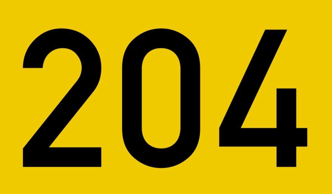 El número angelical 204