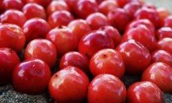 Arándano rojo: 14 propiedades y beneficios para la salud