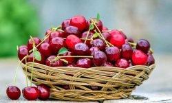 Cerezas: 18 propiedades y beneficios para la salud