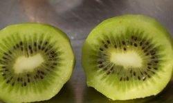 Kiwi: 18 propiedades y beneficios para la salud