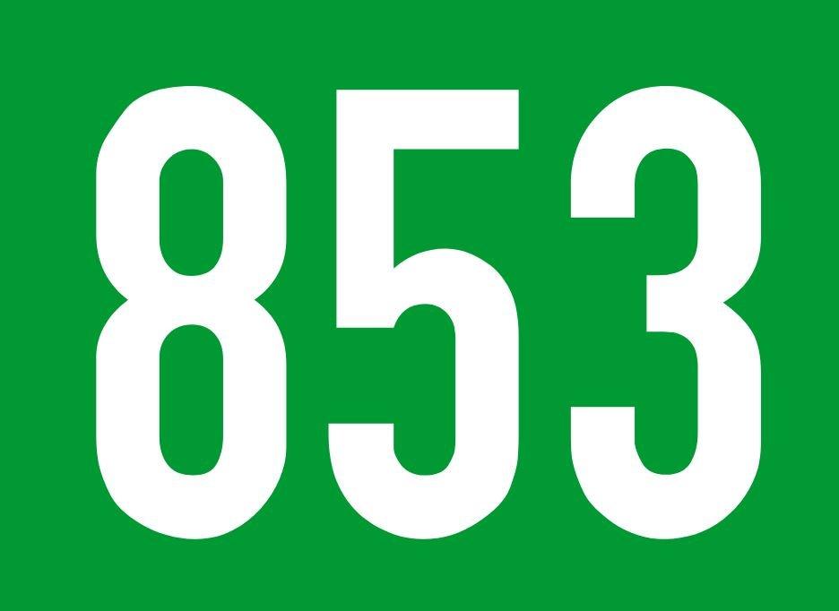 El número angelical 853
